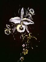FABRIC PAINTING FASHION AND CRAFTS  SENI LUKIS KAIN  DESIGN KAIN LUKIS  PRODUK-PRODUK LUKIS KAIN  KERAJINAN LUKIS KAIN  BELAJAR MELUKIS DIATAS KAIN  MM CRAFT Seni Lukis Kain  Jakarta Indonesia  LUKIS KAIN MM CRAFTS & E1CREATIVE www.e1creative.net www.e1creative.blogspot.com www.mmcraft.wordpress.com  Seni lukis kain. Produk-produk lukis kain. Kursus lukis kain. Cat lukis kain. Kerudung lukis.  Semua tentang lukis kain ada disini.  KURSUS MELUKIS DIATAS KAIN  MM CRAFT & E1 CREATIVE menyelenggarakan kursus lukis kain bagi perorangan maupun kelompok. Mengajarkan berbagai tehnik lukis kain, diatas bermacam jenis kain, dan menggunakan jenis cat lukis kain yang berbeda-beda. Dengan tujuan agar peserta kursus dapat melukis diatas berbagai macam produk berbasis kain.  Melukis kain itu mudah, siapapun pasti bisa. Tidak harus berbakat melukis. Hanya butuh kesabaran, ketelatenan dan semangat untuk terus berlatih dan berkarya. Melukis diatas kain??? Waah asyik!!! Bisa untuk bisnis. Atau sekedar hobby pengisi waktu luang.  CAT LUKIS KAIN MM.  JENIS: 1. TEXTILE, untuk melukis semua jenis kain, hasil lembut. 2. TEXTILE TIMBUL, untuk melukis semua jenis kain, hasil timbul namun tidak kaku. 3. SILK, untuk melukis sutra dan semua kain, hasil lukisan menyatu dengan kain sangat lembut. Semua jenis cat lukis kain MM finishing hanya dengan setrika.  CAT LUKIS KAIN MM. MM FABRIC PAINTS. MURAH BERKUALITAS.  Cat lukis kain merk MM tersedia dalam ukuran 30ml harga 15000. Dan 60ml harga 25000.  Tersedia jenis; 1. Textile 2. Textile timbul 3. Silk 4. Synthetic  Hasil lukis lembut tidak kaku. Dapat digunakan untuk berkreasi lukis bermacam produk berbahan dasar kain. Made in Indonesia.  SEMUA TENTANG LUKIS KAIN ADA DISINI.  KURSUS LUKIS KAIN. MENYEDIAKAN CAT LUKIS KAIN MERK MM. KERUDUNG PARIS LUKIS. KAIN LUKIS. DESIGN LUKIS KAIN.  KERUDUNG LUKIS JILBAB LUKIS.  Produksi kerudung lukis jilbab lukis. Yang dilukis menggunakan cat lukis kain merk MM. 3 Jenis cat yang dipakai adalah: textile, textile 